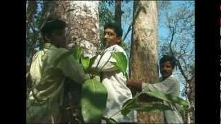 Appiko- to embrace In the tradition of Gandhi and the Chipko movement,they used direct action to save the forests of the Western Ghats. The story of a non-violent grass-roots movement that arose in the vilages of Southern India. An inspirational half-hour documentary about environmental activism and tree-hugging featuring Sunderlal Bahuguna, Pandurang Hegde and Vandana Shiva